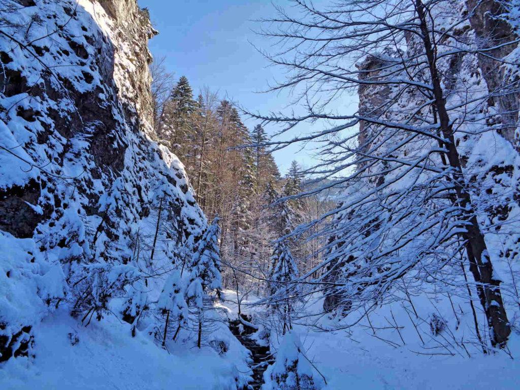 Dolina za Bramką zimą