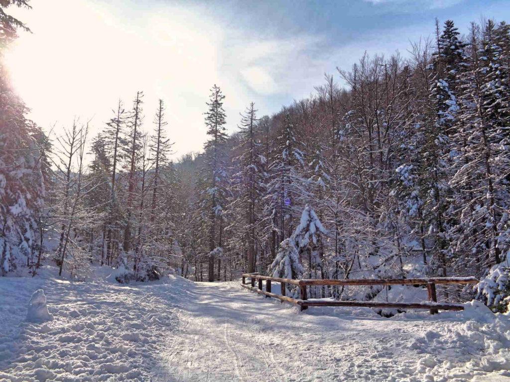 Droga pod Reglami, Dolina Białego
