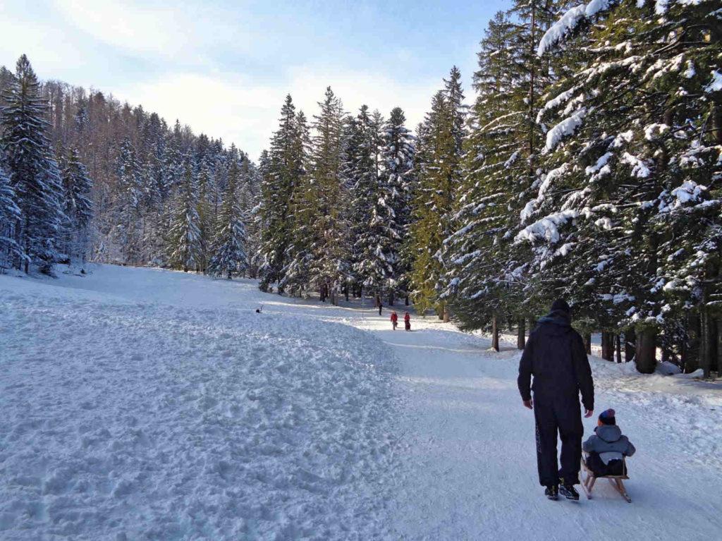 Tatry, spacer z dziećmi