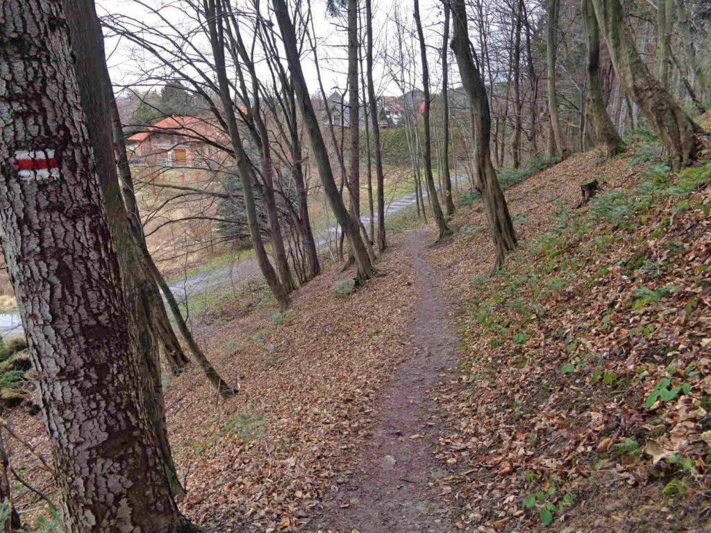 Czerwony szlak koło Myślenic