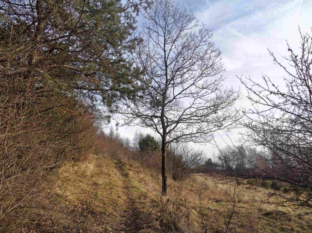 Kajasówka, szlak dydaktyczny