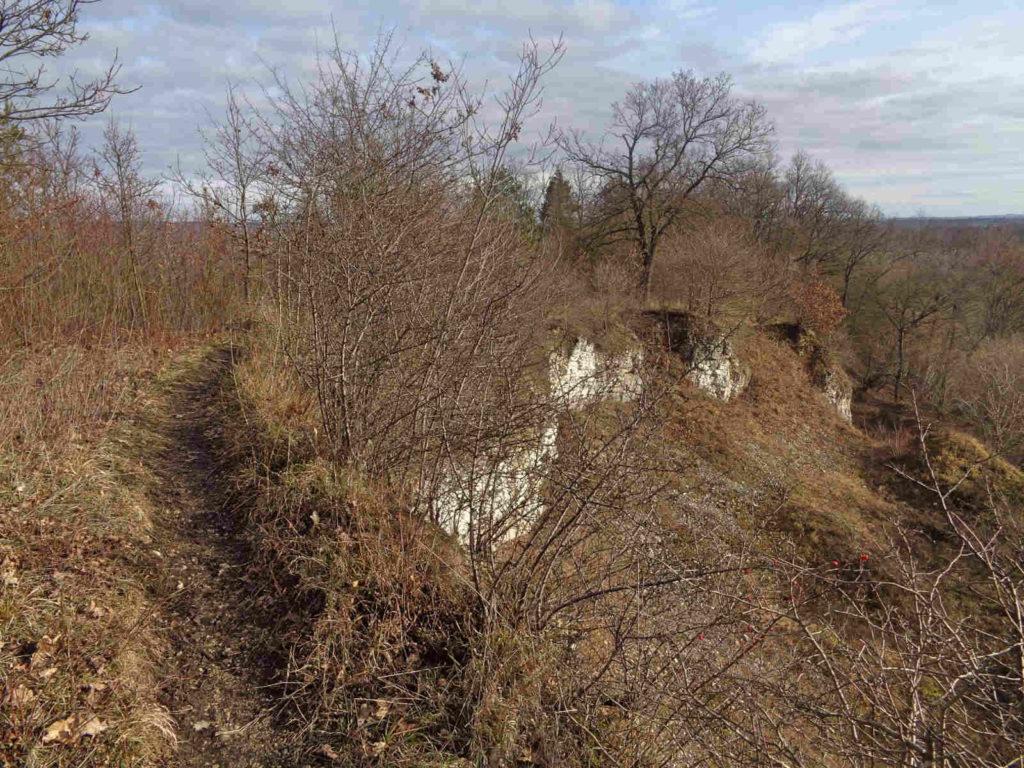 Rezerwat Kajasówka, szlak turystyczny