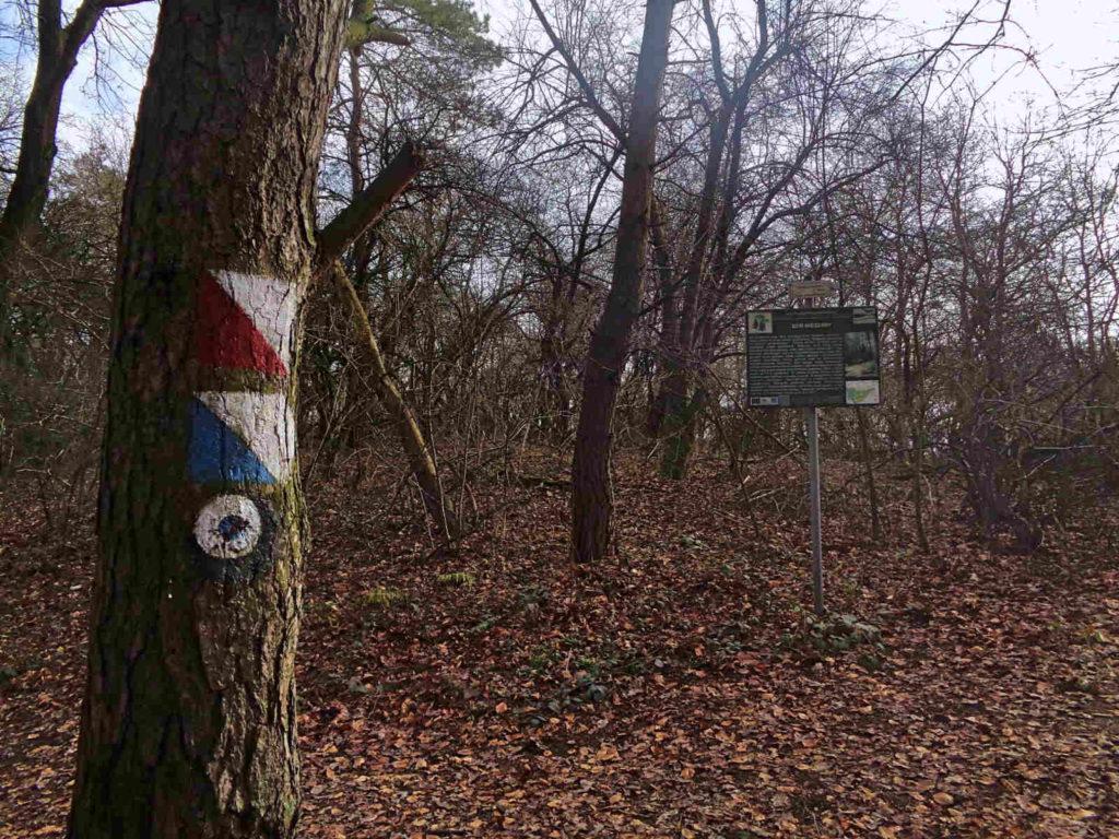 Rezerwat Kajasówka, szlaki