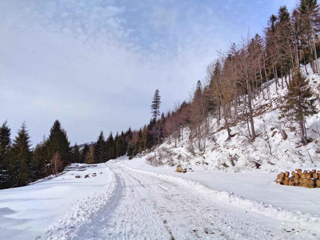 Klimczok, niebieski szlak zimą