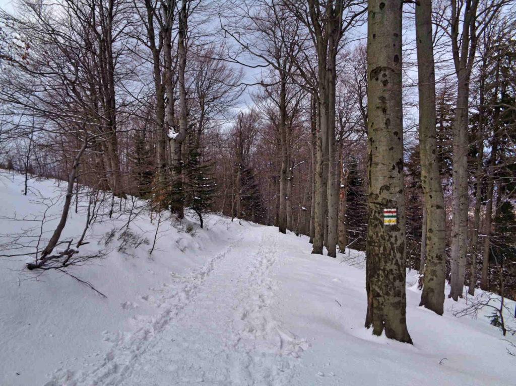 Szyndzielnia, szlaki zimą