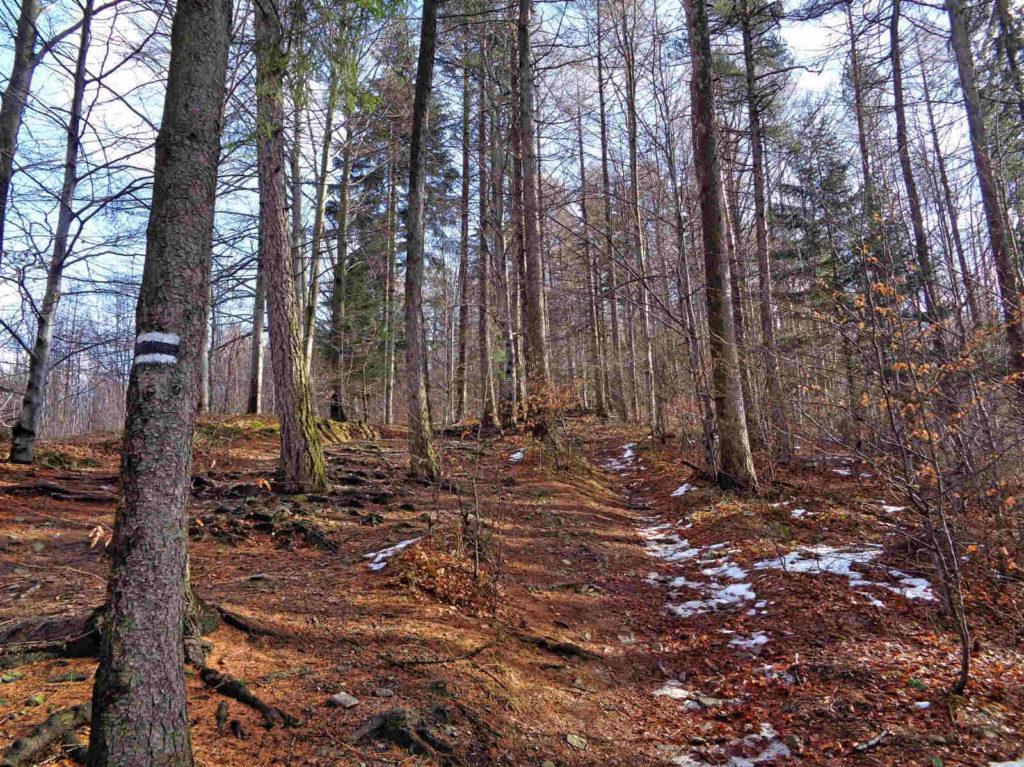 Czarny szlak na Leskowiec