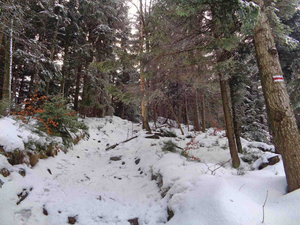 Leskowiec - Potrójna, szlak
