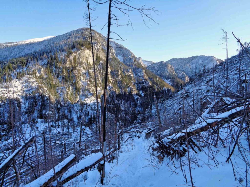 Hala Stoły, szlak w zimie