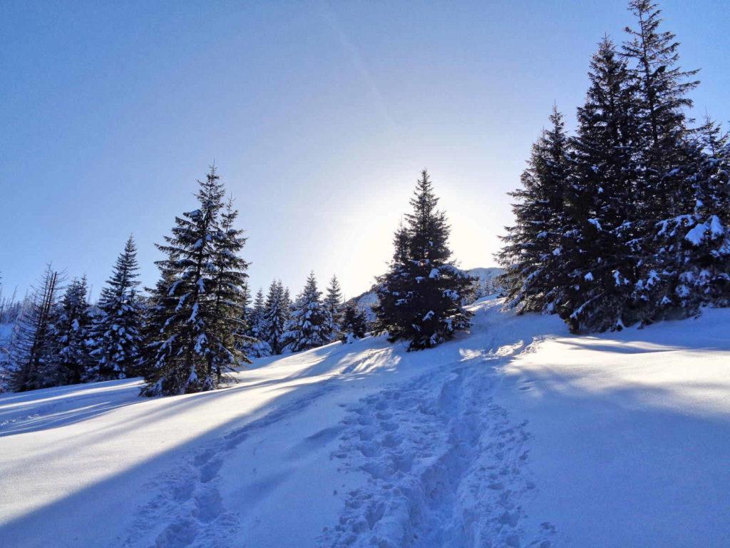 Hala Stoły, wejście w zimie