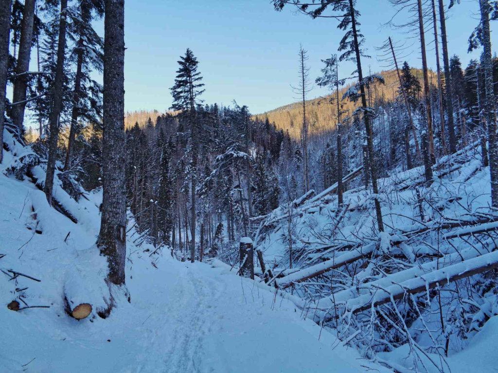 Polana Stoły, szlak w zimie