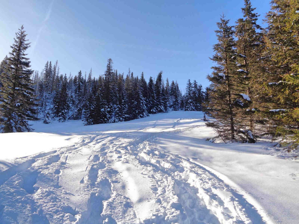 Polana Stoły, wejście zimą