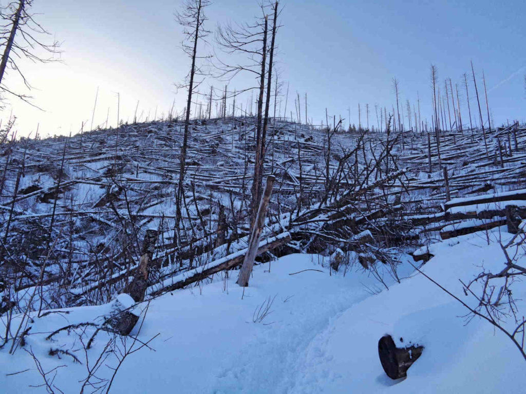Polana Stoły, zniszczony szlak