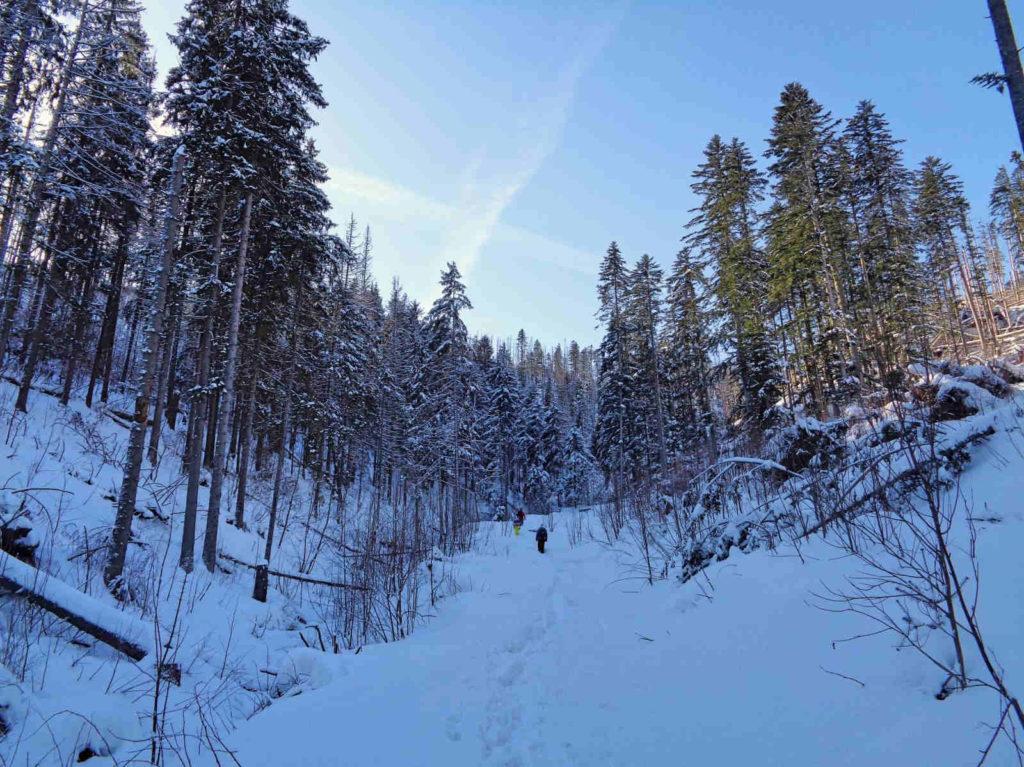 Szlak na Halę Stoły zimą