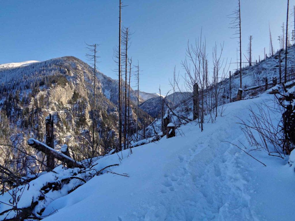 Szlak na Polanę Stoły w zimie