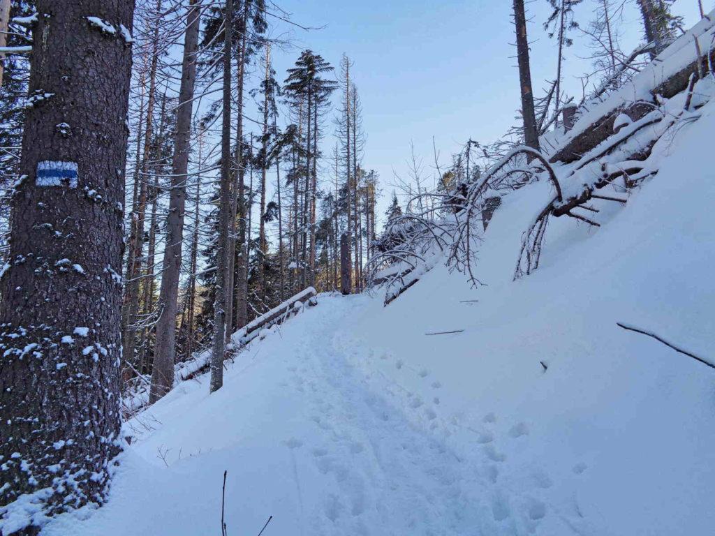 Szlak na Polanę Stoły zimą