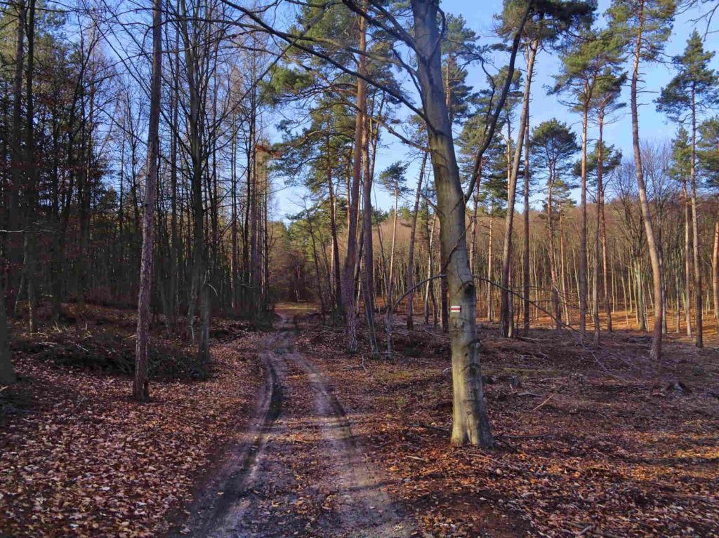 Czerwony szlak, Krzeszowice