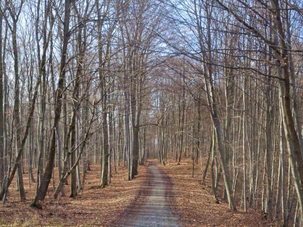 Szlaki w Tenczyńskim Parku Krajobrazowym