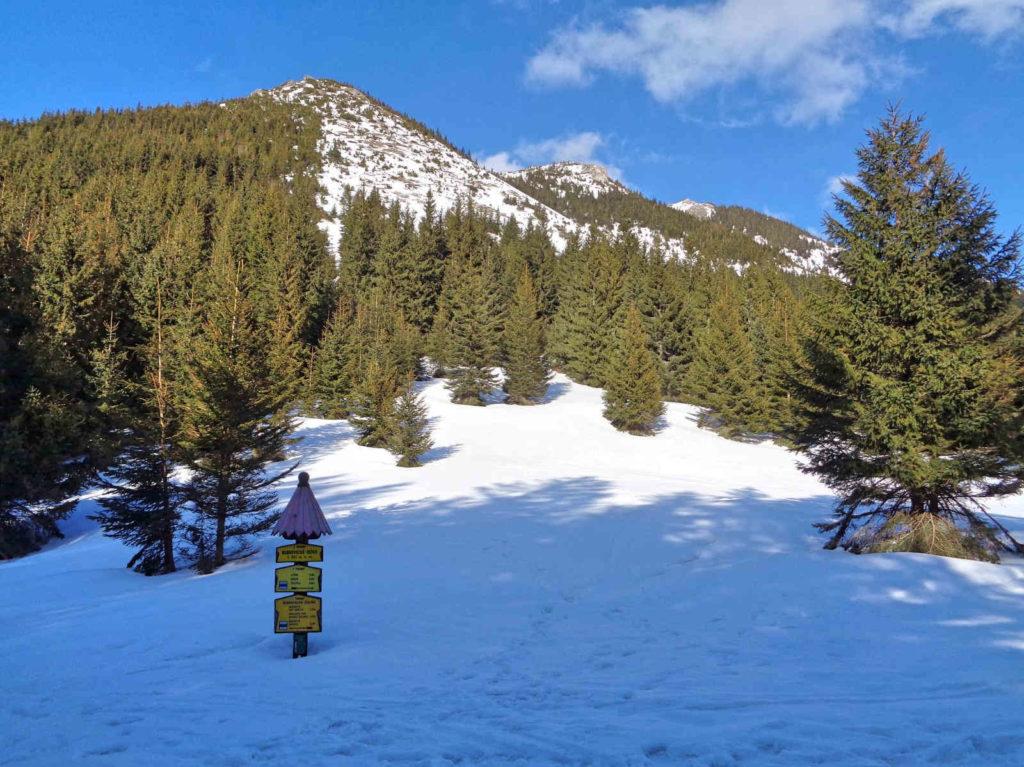 Przełęcz Bobrowiecka zimą