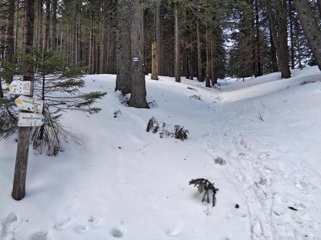 Szlak na Bobrowiecką Przełecz zimą