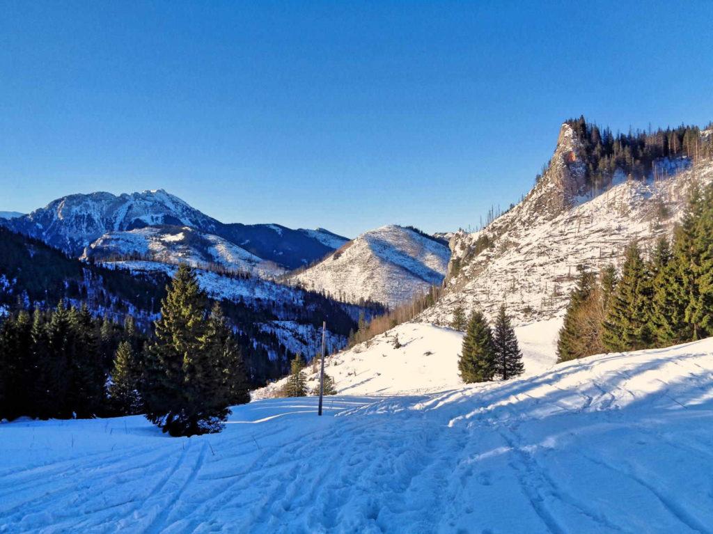 Ścieżka nad Reglami zimą