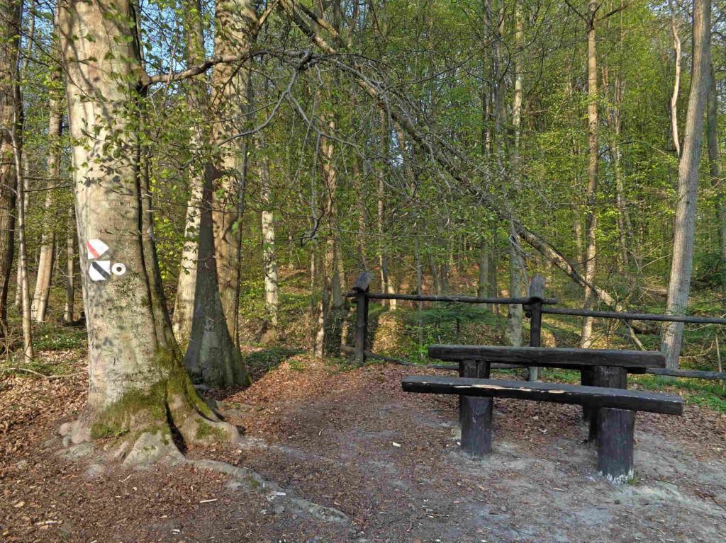 Las Zabierzowski, szlak czarny łącznikowy