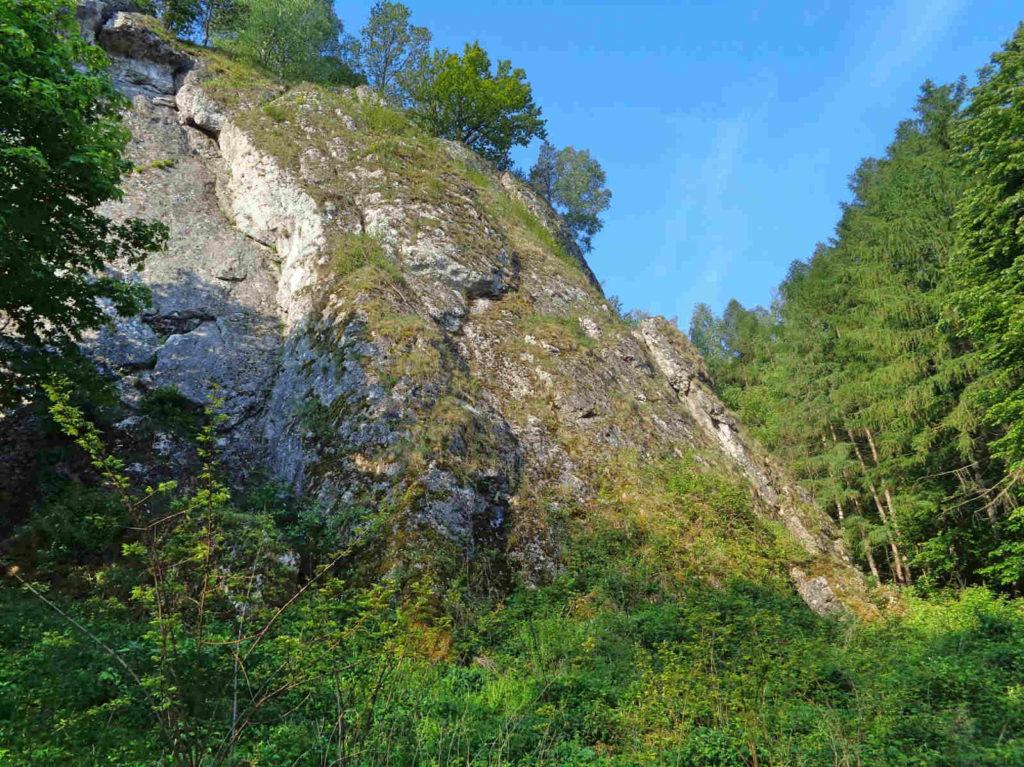 Dolina Kobylańska, skałki wapienne