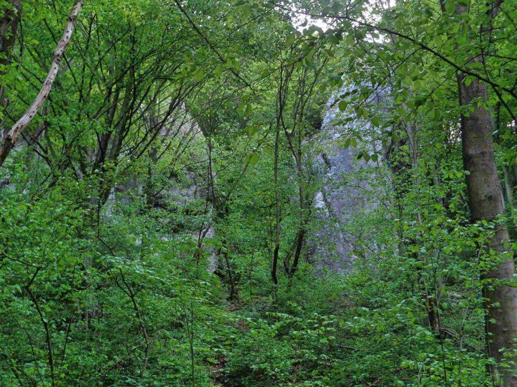 Dolina Kobylańska, spacer