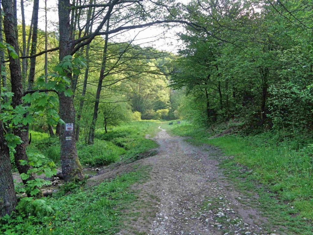 Dolina Kobylańska, szlaki