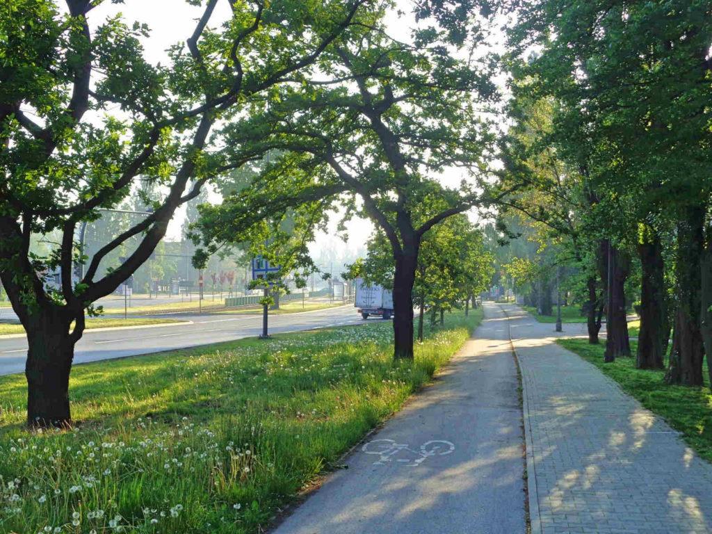 Aleja Pokoju, ścieżka rowerowa