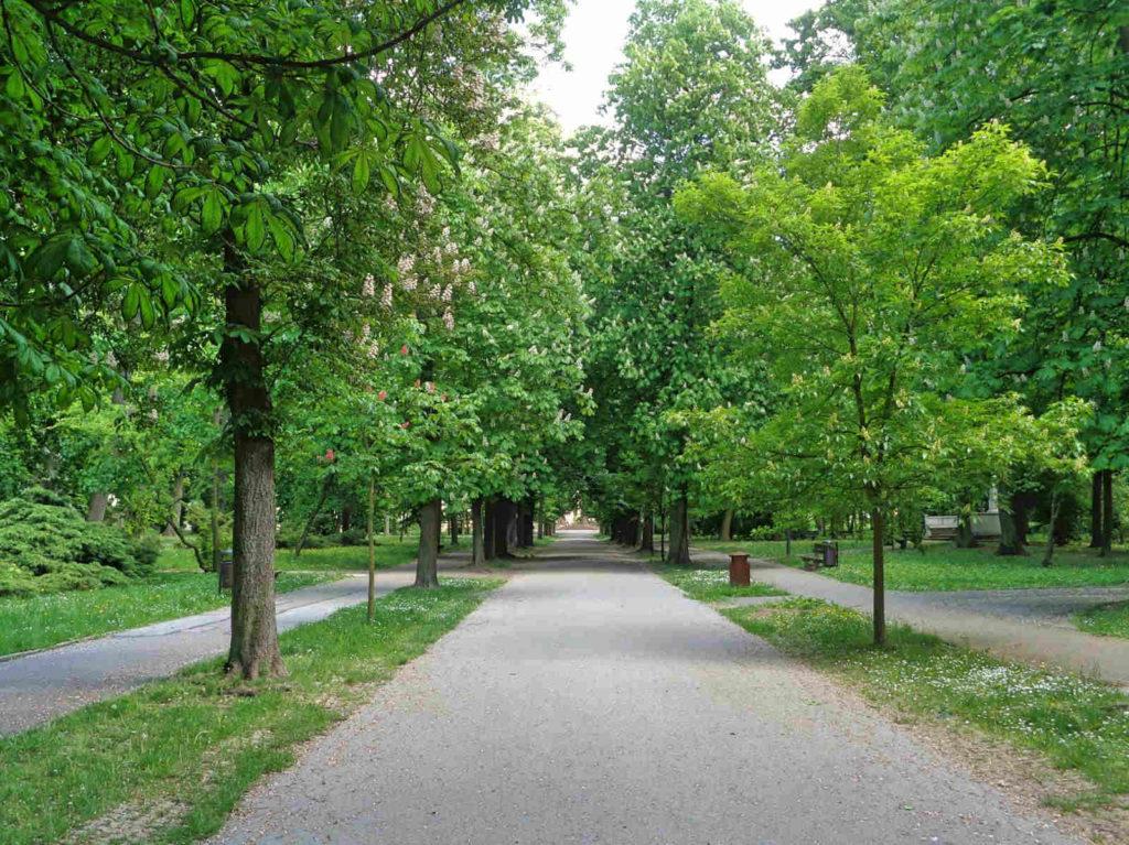 Kielce, park Stanisława Staszica