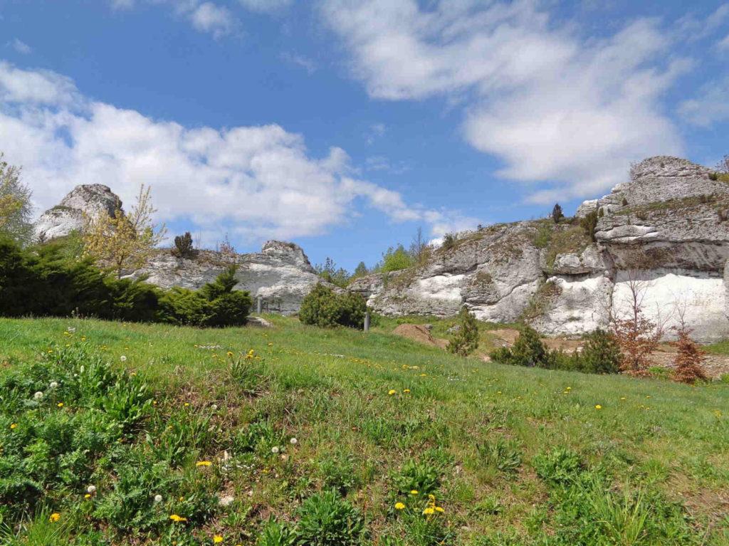 Góra Janowskiego