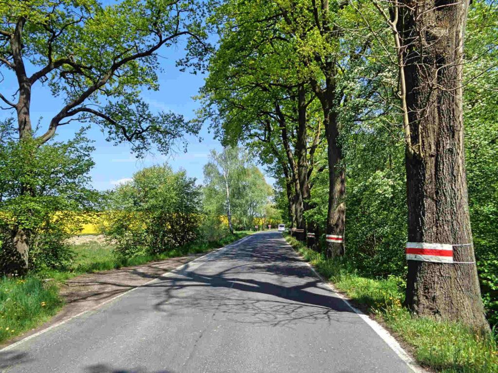 Droga Andrychów - Zator