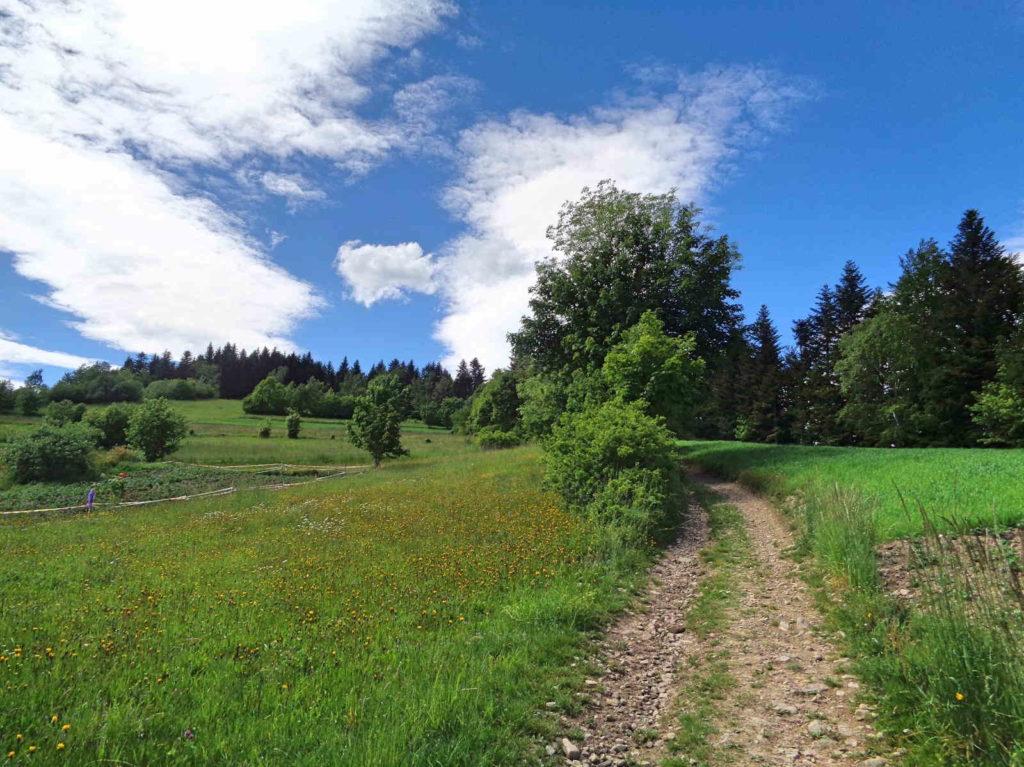 Wierzbanowska Góra, podejście