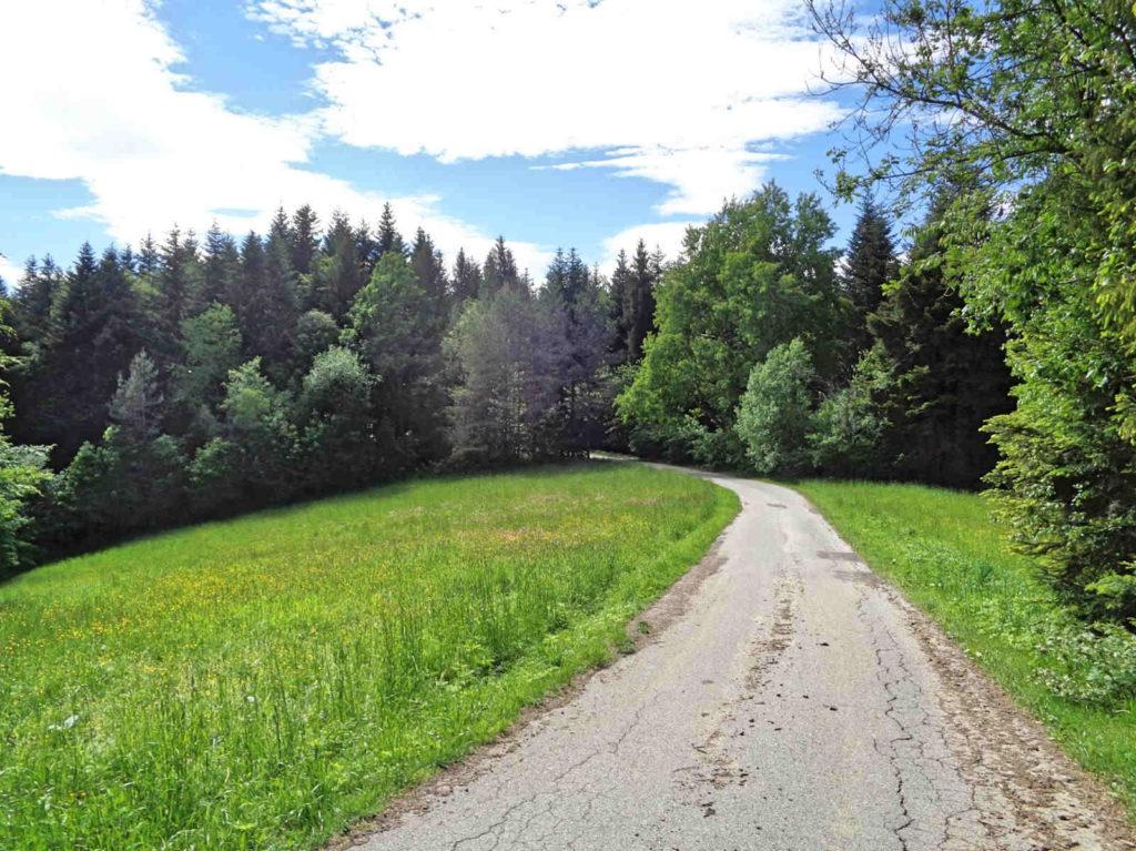 Zejście na Przełęcz Jaworzyce