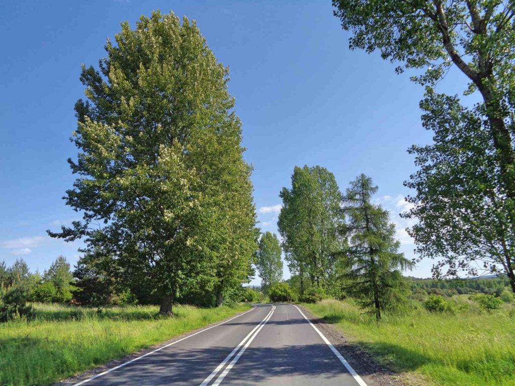 Droga Oklusz - Klucze