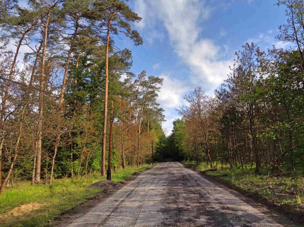 Frywałd, droga leśna