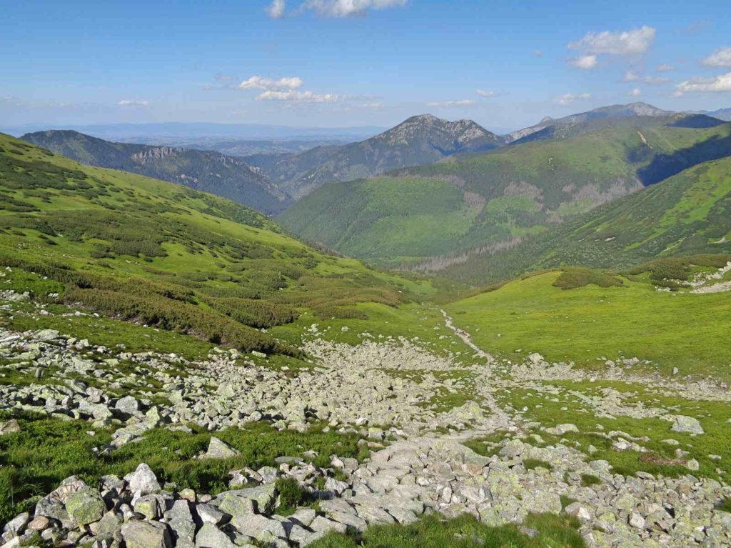 Wyżnia Dolina Chochołowska