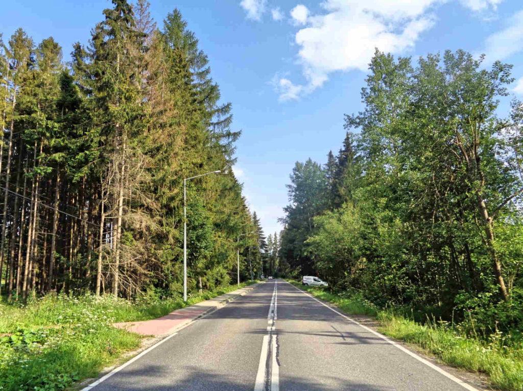 Przełęcz Krowiarki, zjazd do Zubrzycy