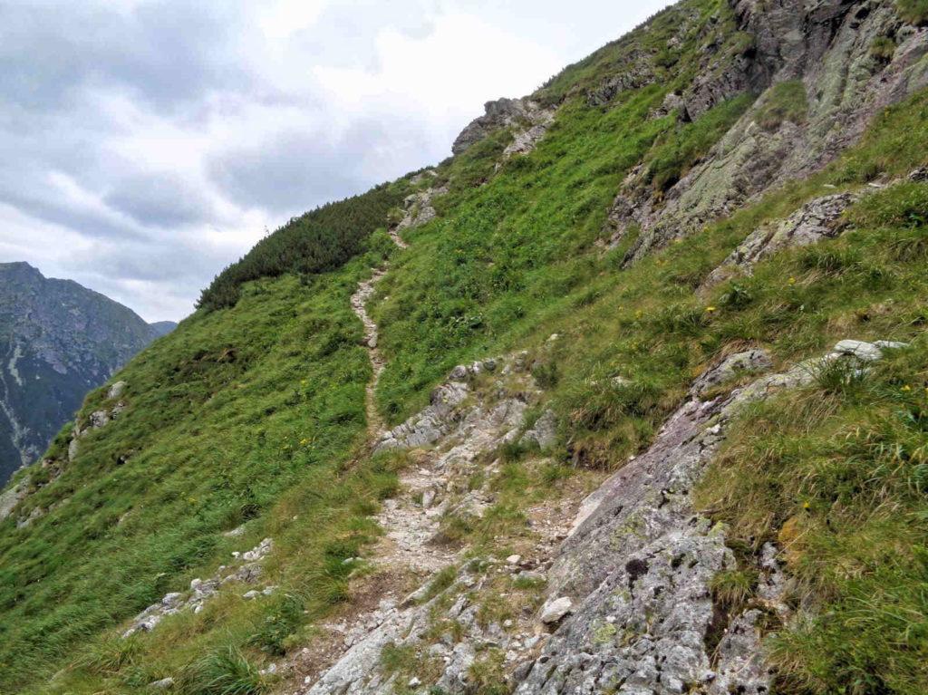 Droga na Białczańską Przełęcz Wyżnią