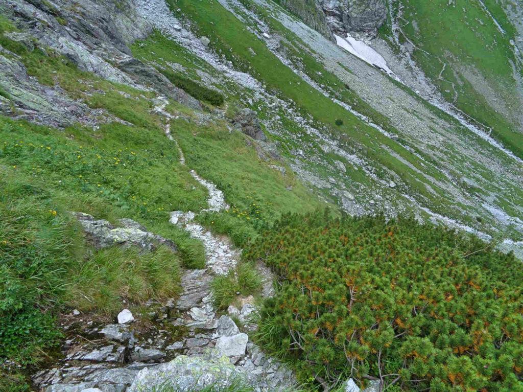 Wyżnia Przełęcz Białczańska, ścieżka