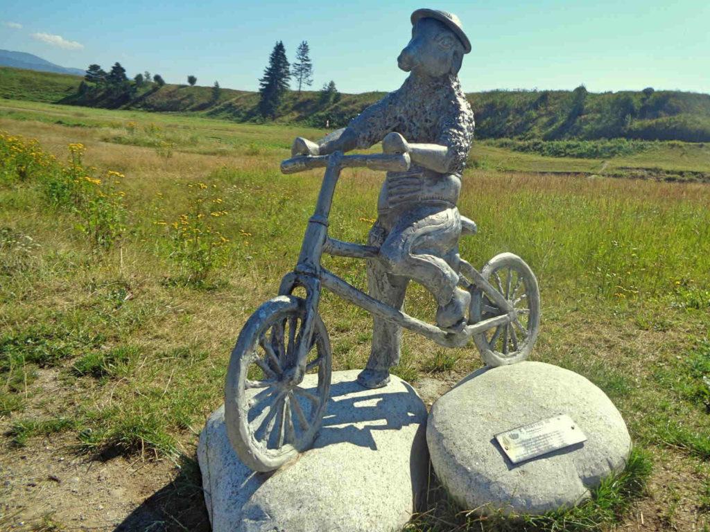 Nowy Targ, owca rowerzysta