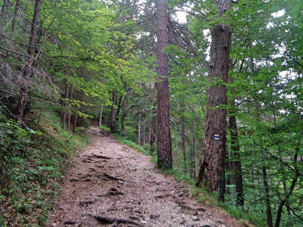 Szlaki w Słowackim Raju