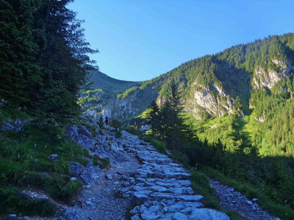 Szlak przez Dolinę Jaworzynkę