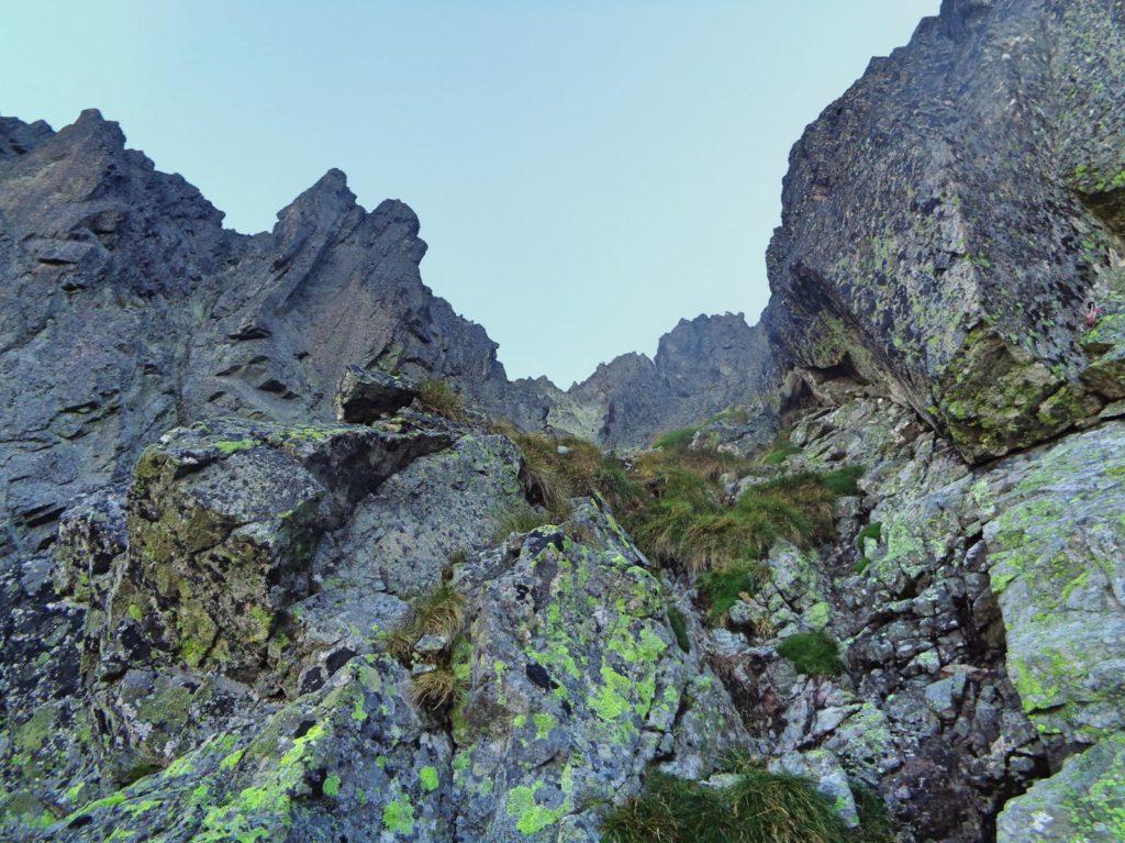 Droga do żlebu pod Małą Durną Przełęczą