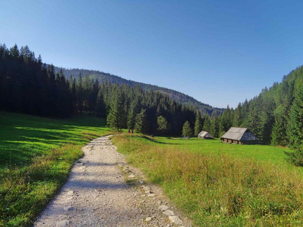 Dolina Jaworzynka, szlak