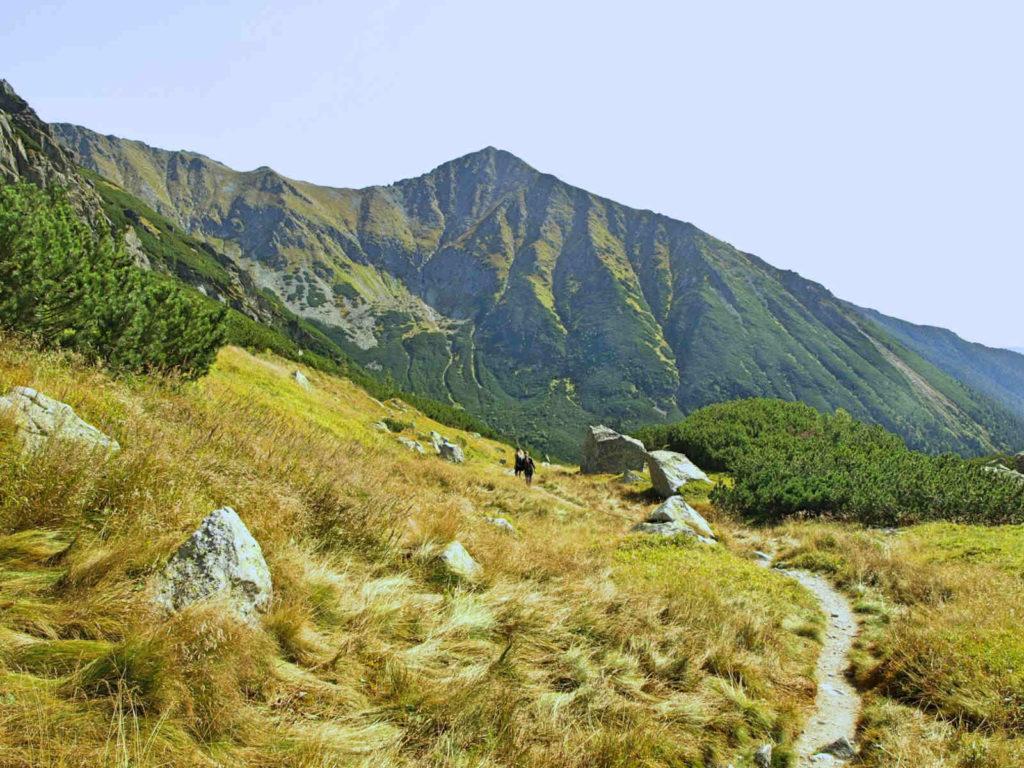 Dolina Raczkowa, żółty szlak
