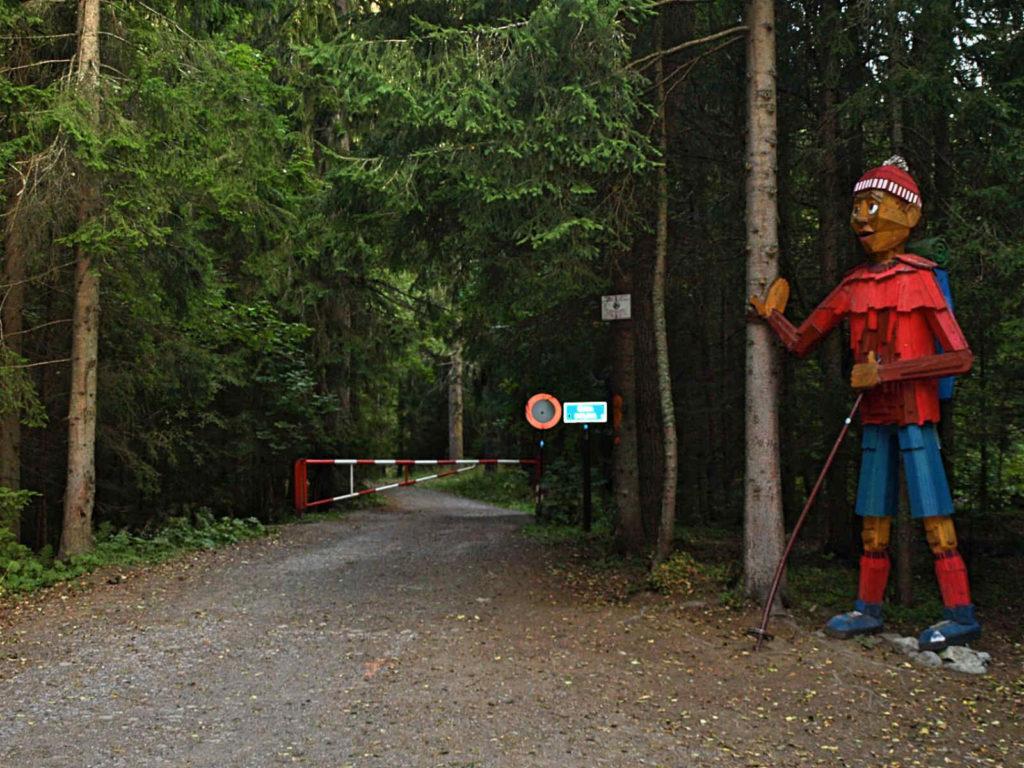 Dolina Wąska, wejście