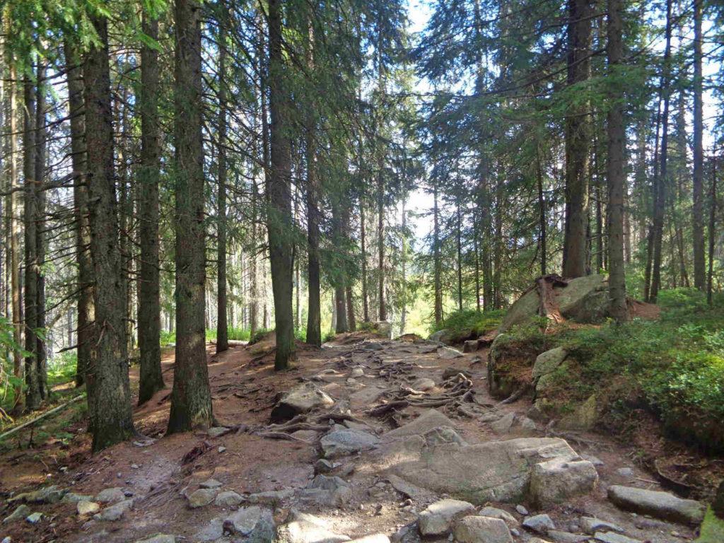 Dolina Młynicka, Szczyrbskie Pleso