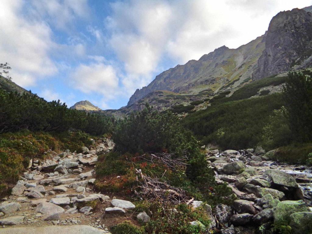 Dolina Młynicka, szlak