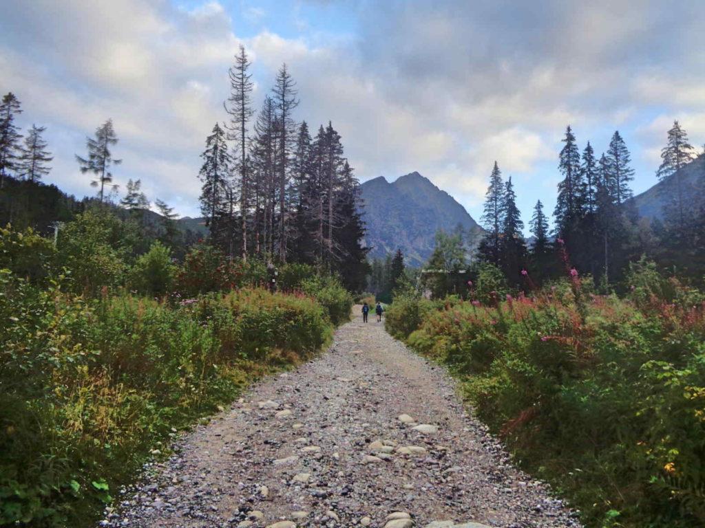 Dolina Młynicka, żółty szlak